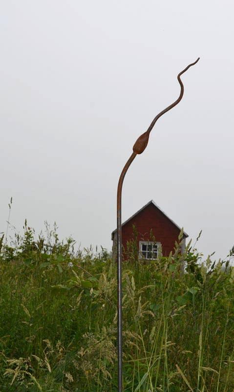 Garlic and hen house