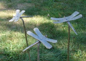 Dragonfly stakes